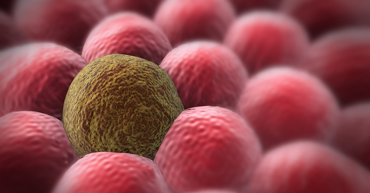 FDA approves immunotherapy drugs to treat more cancer types