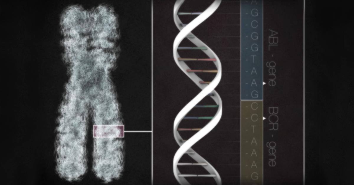 What is CRISPR? | CTCA